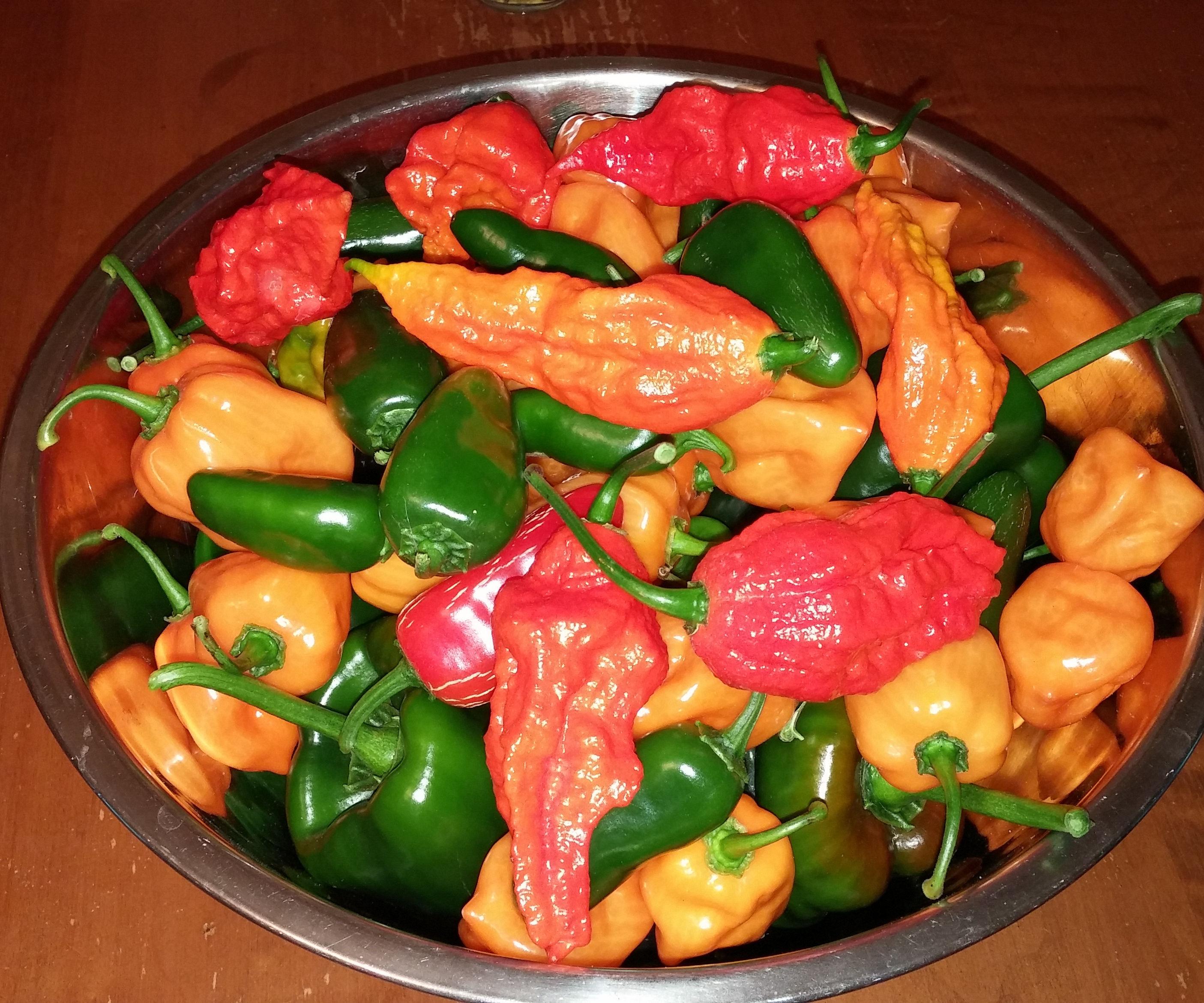 Hot Pepper Preservation