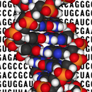 How to use Genome code to design