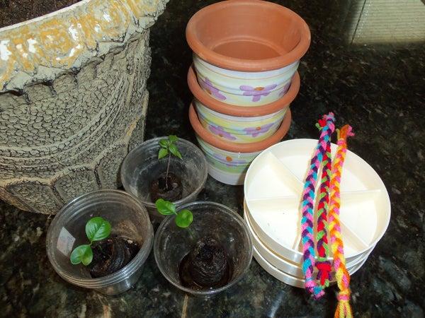 Self-Watering With Yarn