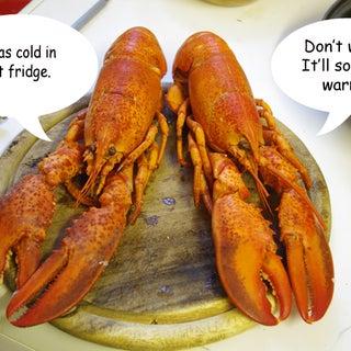 lobsters1.jpg
