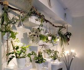 DIY Jungle Plant Wall