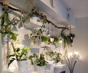 DIY丛林植物墙