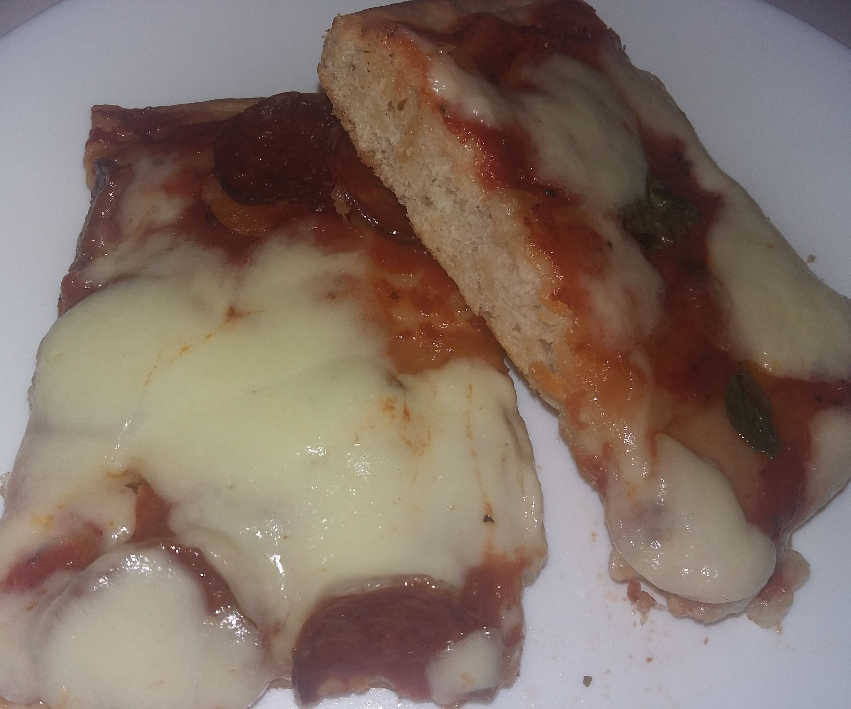 Italian Style Pizza in Oven Form