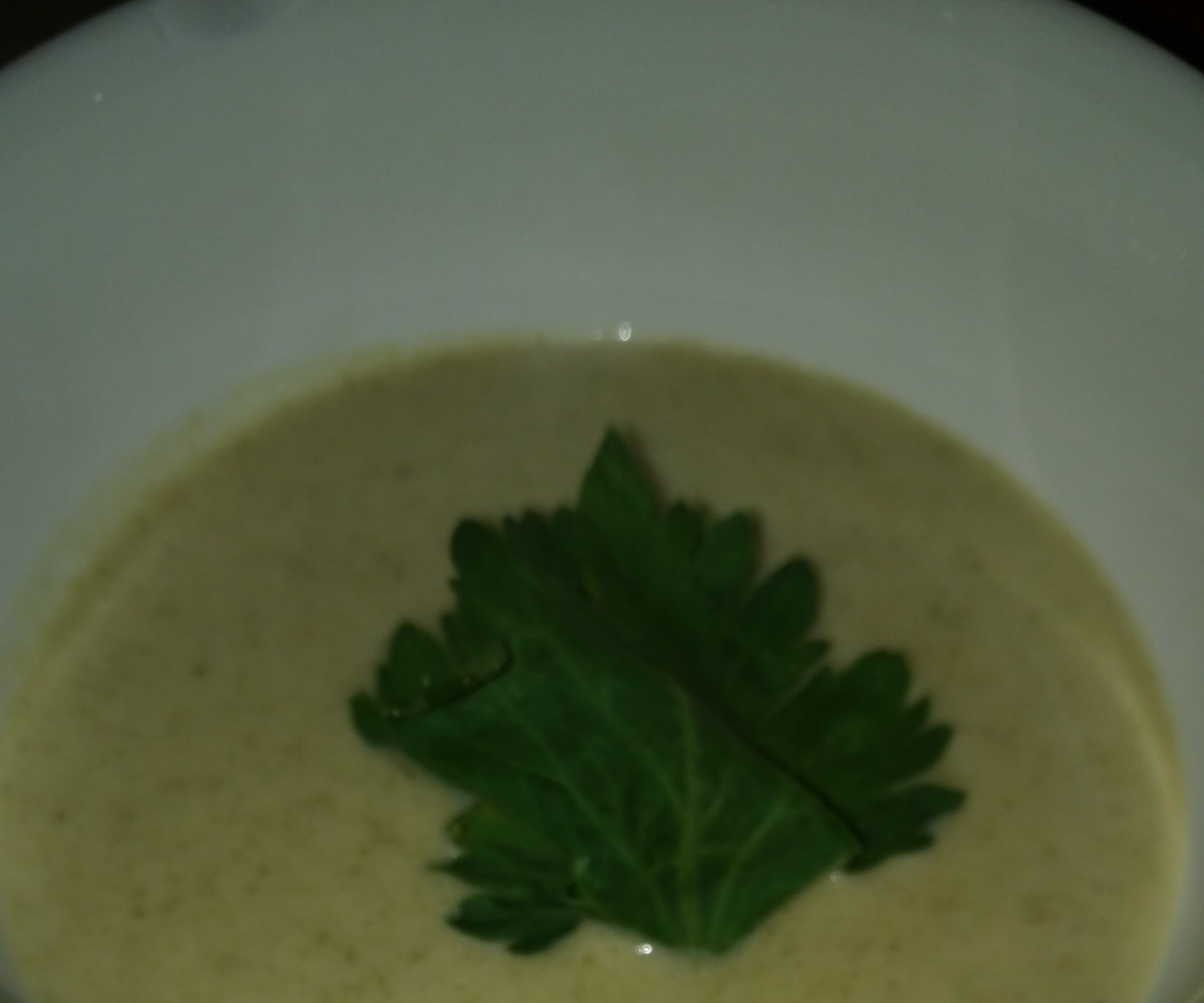 Absolutely Amazing Cream of Celery Soup