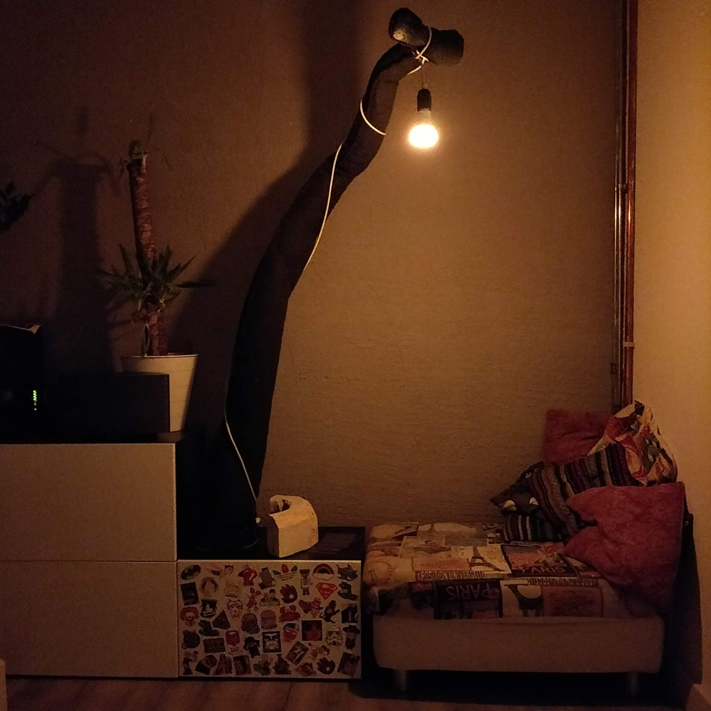 Appendage Lamp