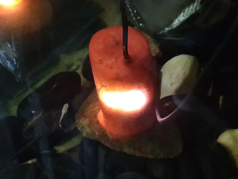 Decorative Underwater Aquarium LED Light