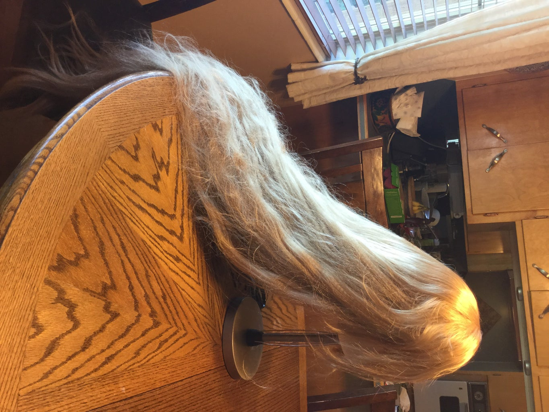 Brushing Wigs