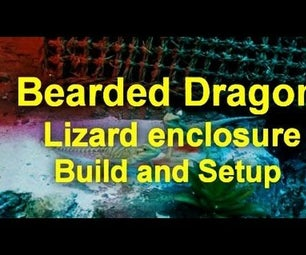 Bearded Dragon Lizard Enclosure