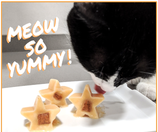 Meow-So-Yummy! Frozen Treats for Cats