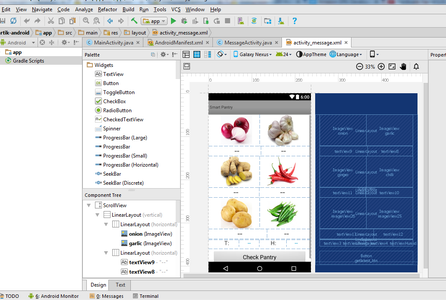 Developing Android App