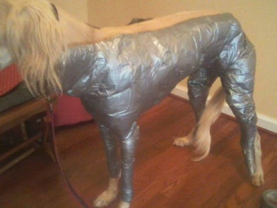 Optional Step: Duct Tape Mannequin