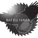 BattleHawkHeavy.