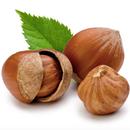 Shrubs to Hazelnuts