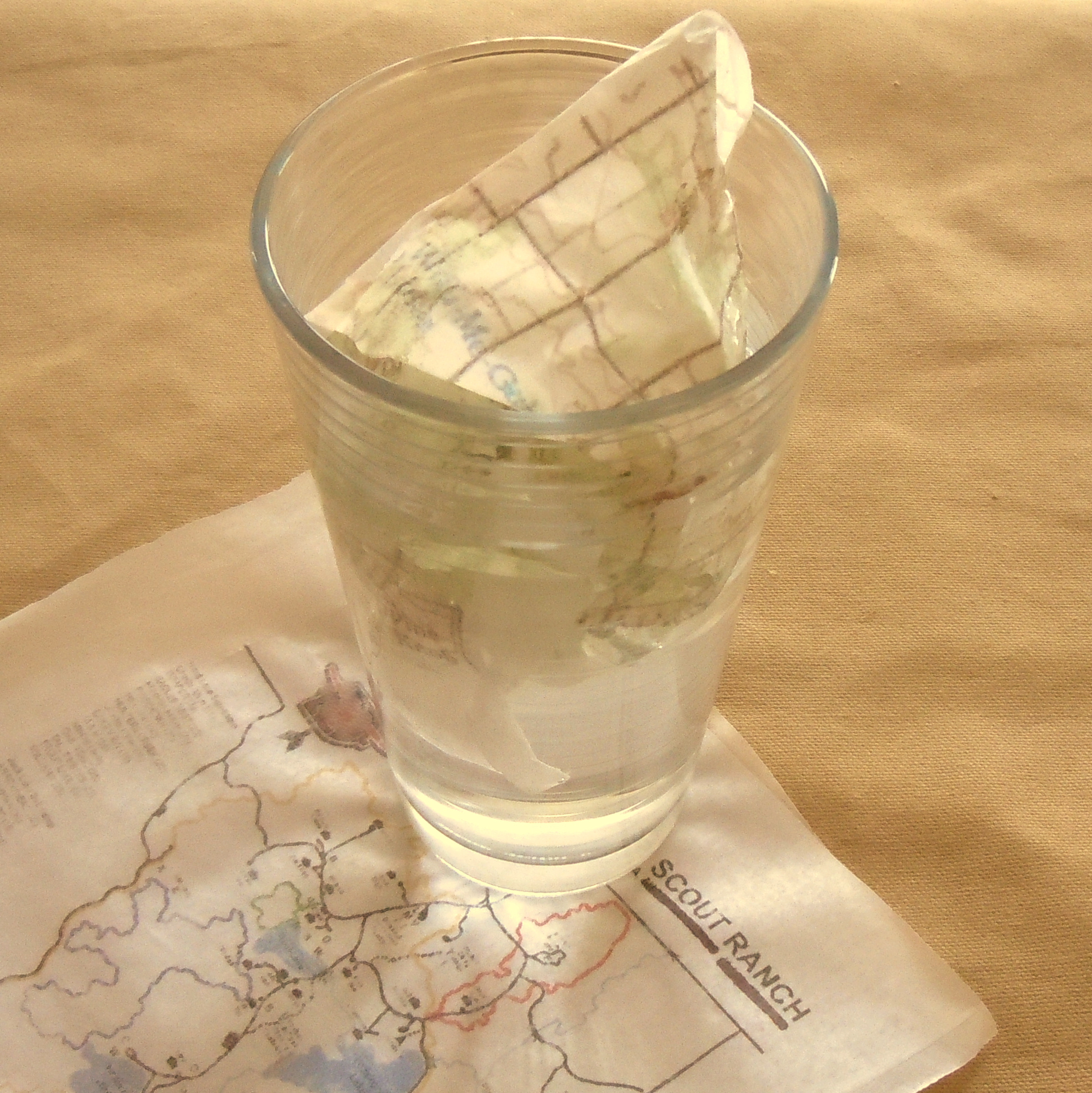 Print Waterproof Plastic Maps
