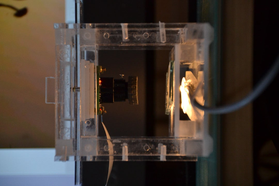 Illumination; Reflected Light Vs. Transillumination Microscopy