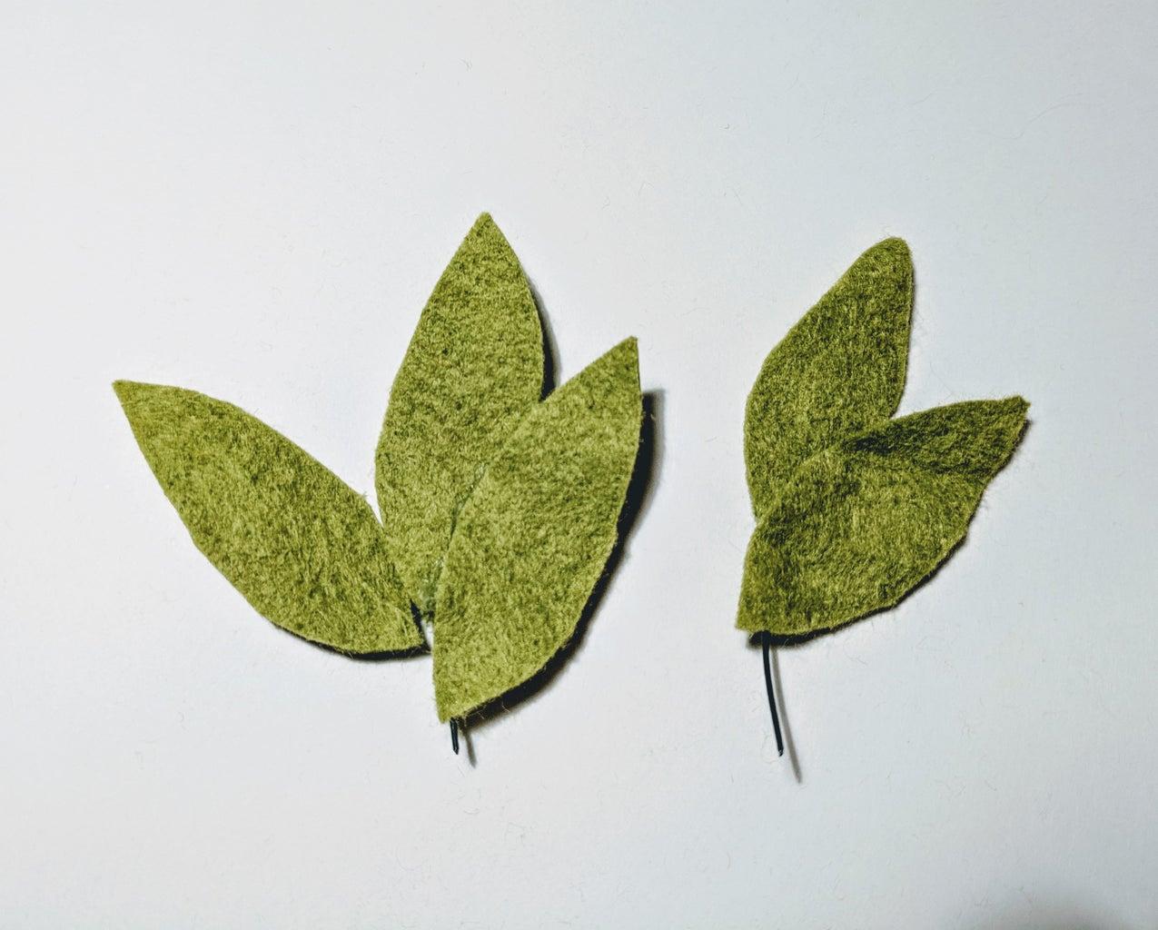 A Different Type of Leaf Arrangement