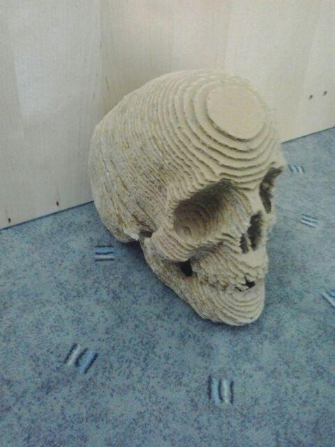 Cardboard Skull