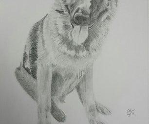 German Shepherd Pencil Drawing