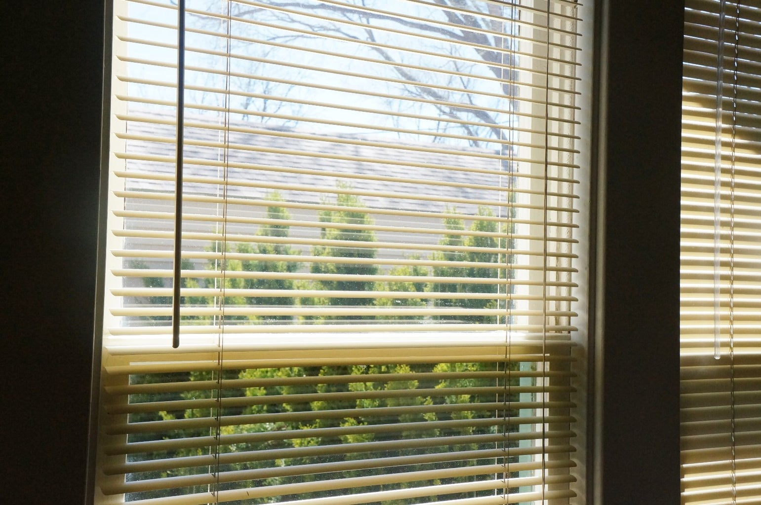 Blinds Window Coverings Windows and Sills