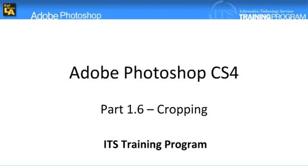 Cropping: Adobe Photoshop (1.6)