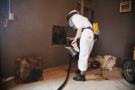 Make a Bee Vacuum That Really Sucks