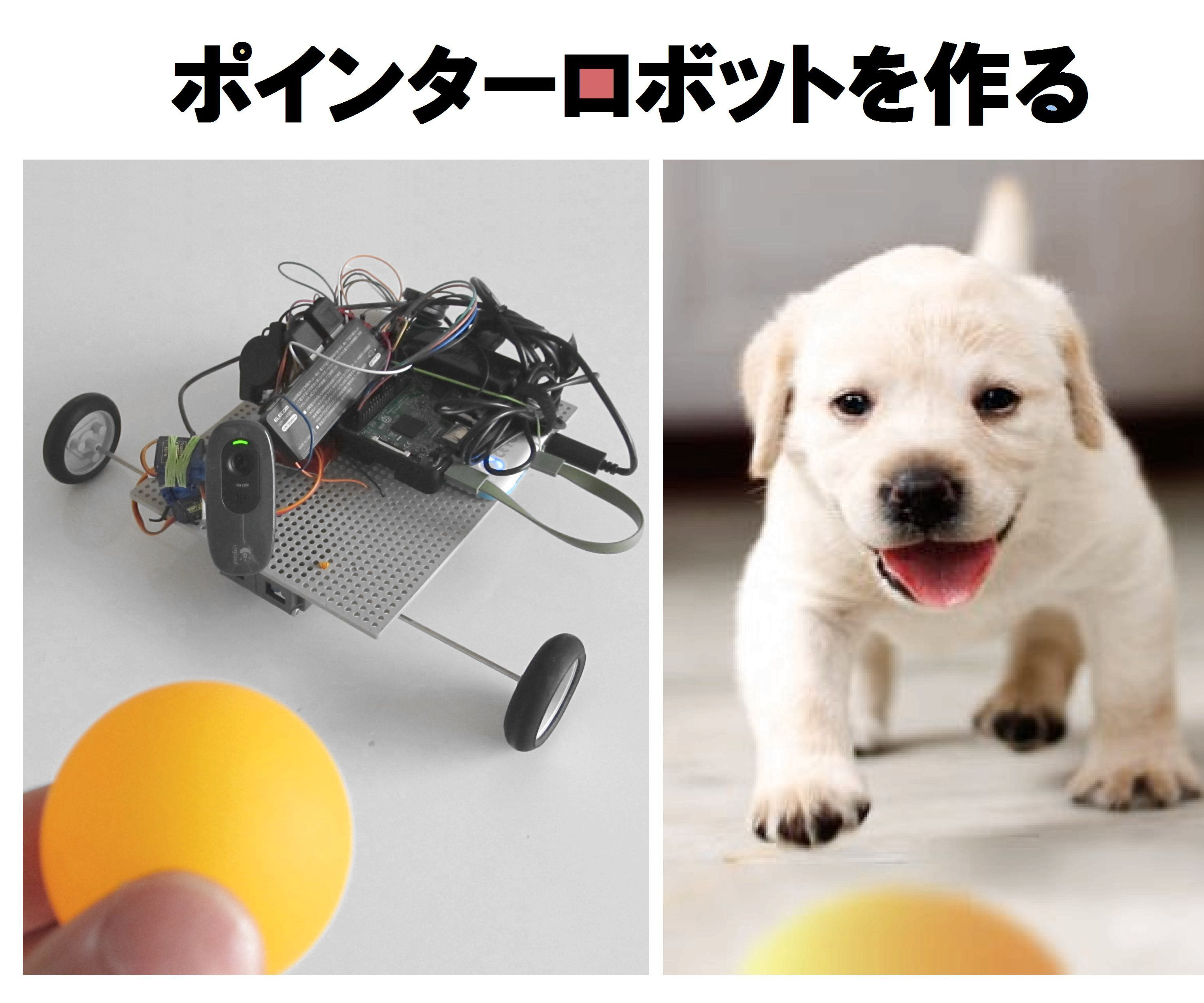 Pointer Robot With RPi and Arduino JPN