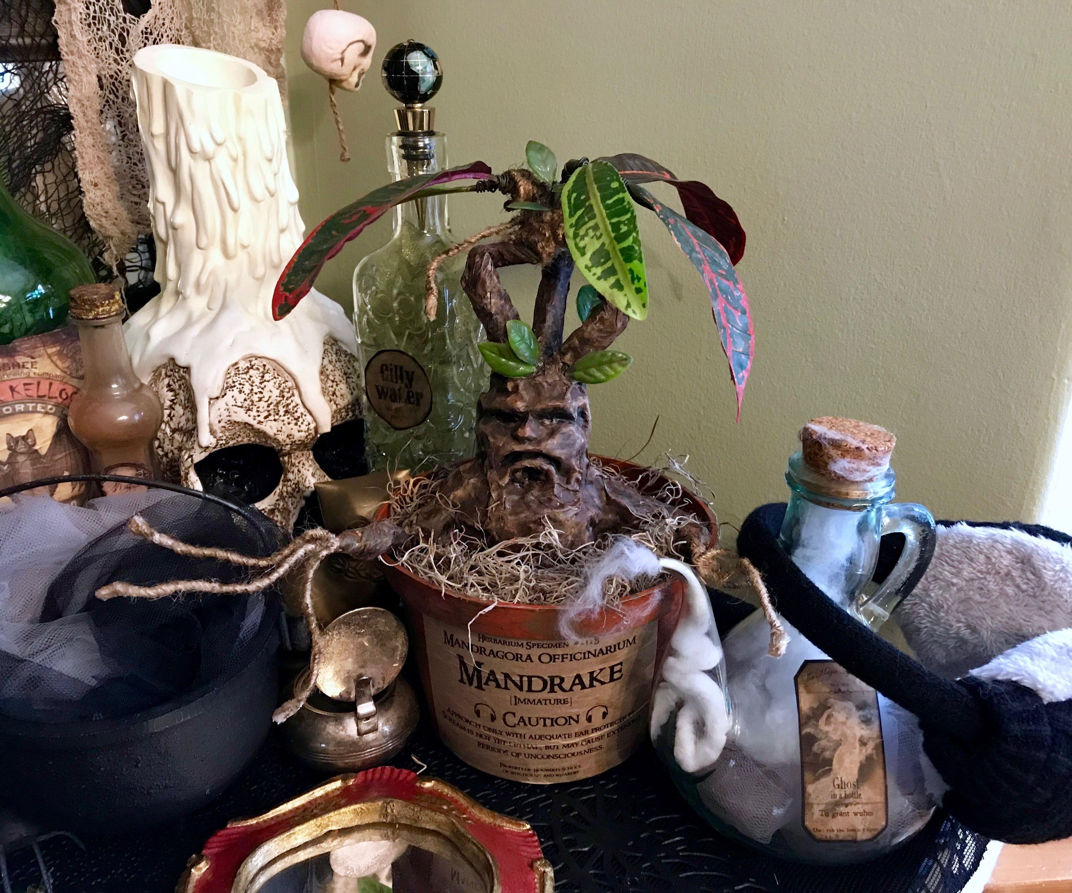 Harry Potter Mandrake Plant Prop