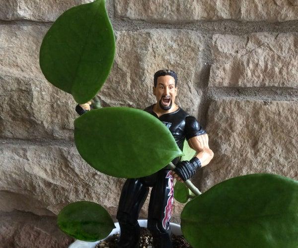 Plant Hugger Dude