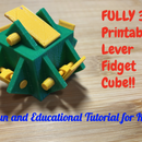 FULLY 3D Printable Lever Fidget Cube!! A Fun and Educational Tutorial for Kids!