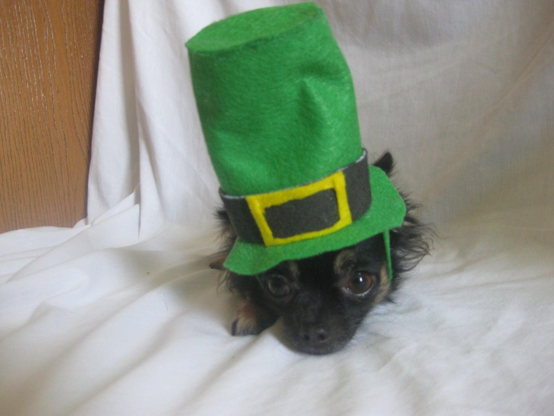 Leprechaun Dog Hat