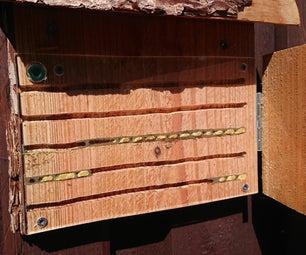 蜜蜂天文台