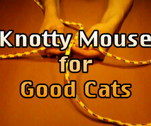 Knotty Mouse Video for Good Cats