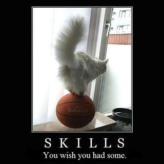True skills.JPG