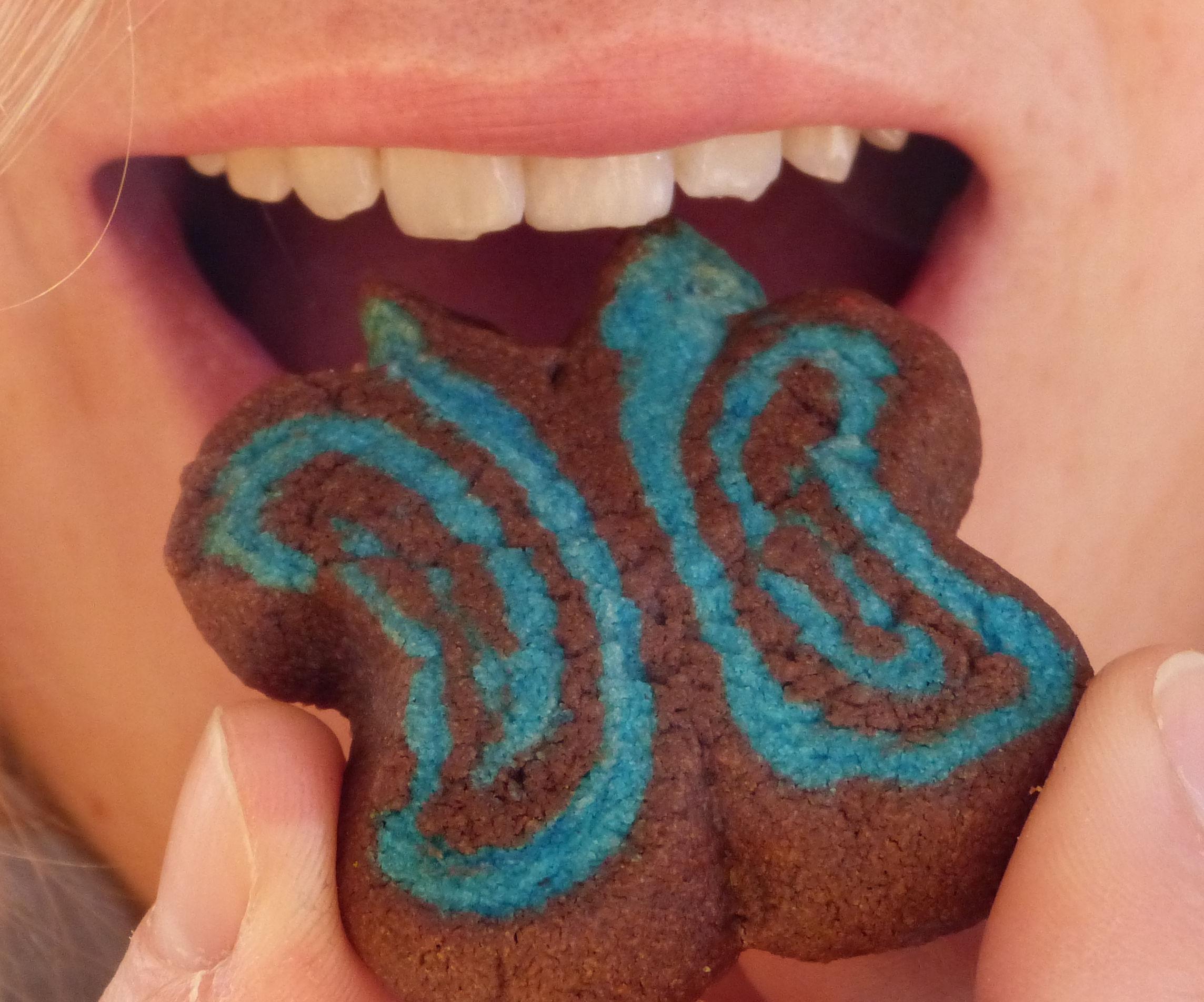 Easy Butterfly Cookies - Nom Nom Nom