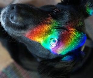 Morris the Wonder Dog Goes Prismatic...
