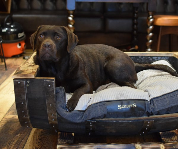 Converting an Old Whiskey Barrel Into a Dog Bed
