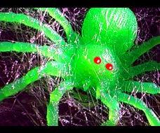 Cobweb Spider Gun - Simple Build