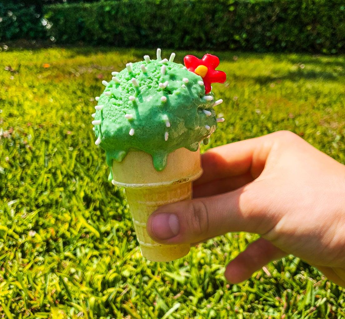 Summer Ice Cream Succulents