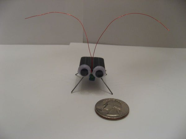 Solar Cockroach Virbobot