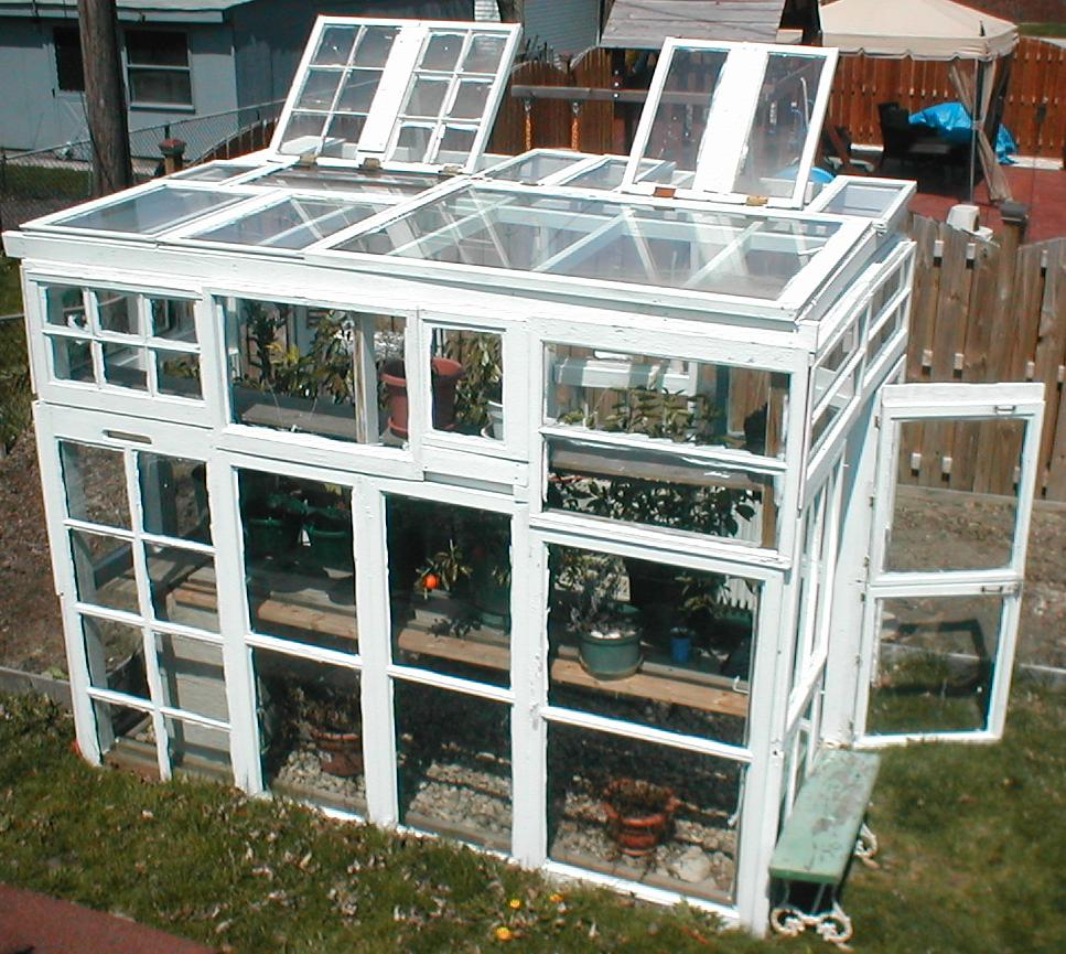 Greenhouse From Old Windows