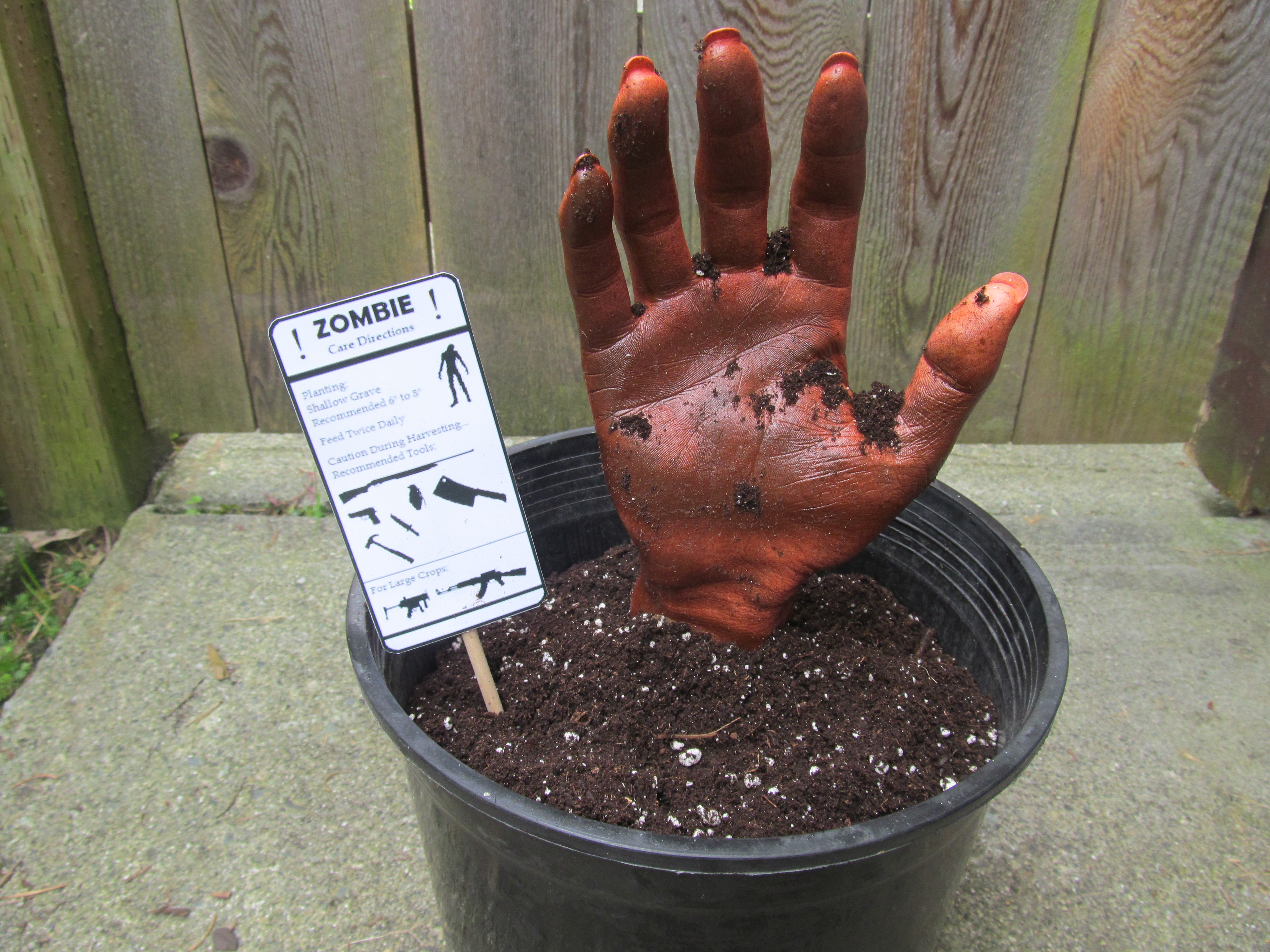 Zombie in a Pot- A Fun Prop/Decoration