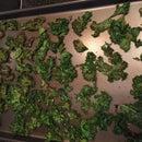 Cajun Kale Chips