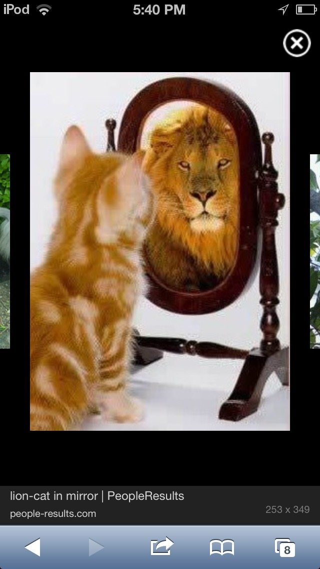 How To Make A Real Live Quick Easy LION CAT!!