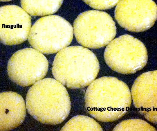 Cottage Cheese Dumplings in Sugar Syrup or Rasgulla