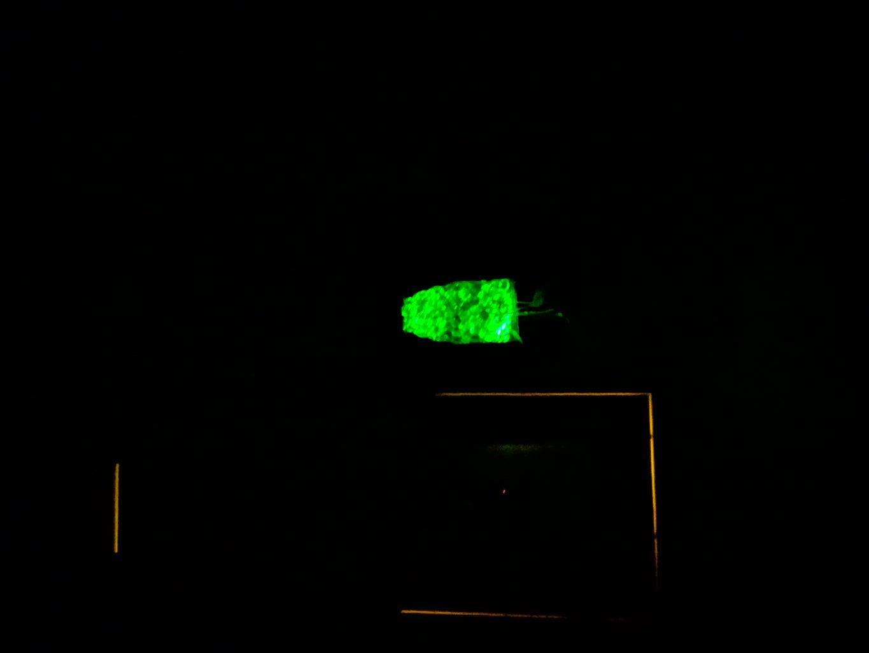 Alien-Glow House Plant Hanger