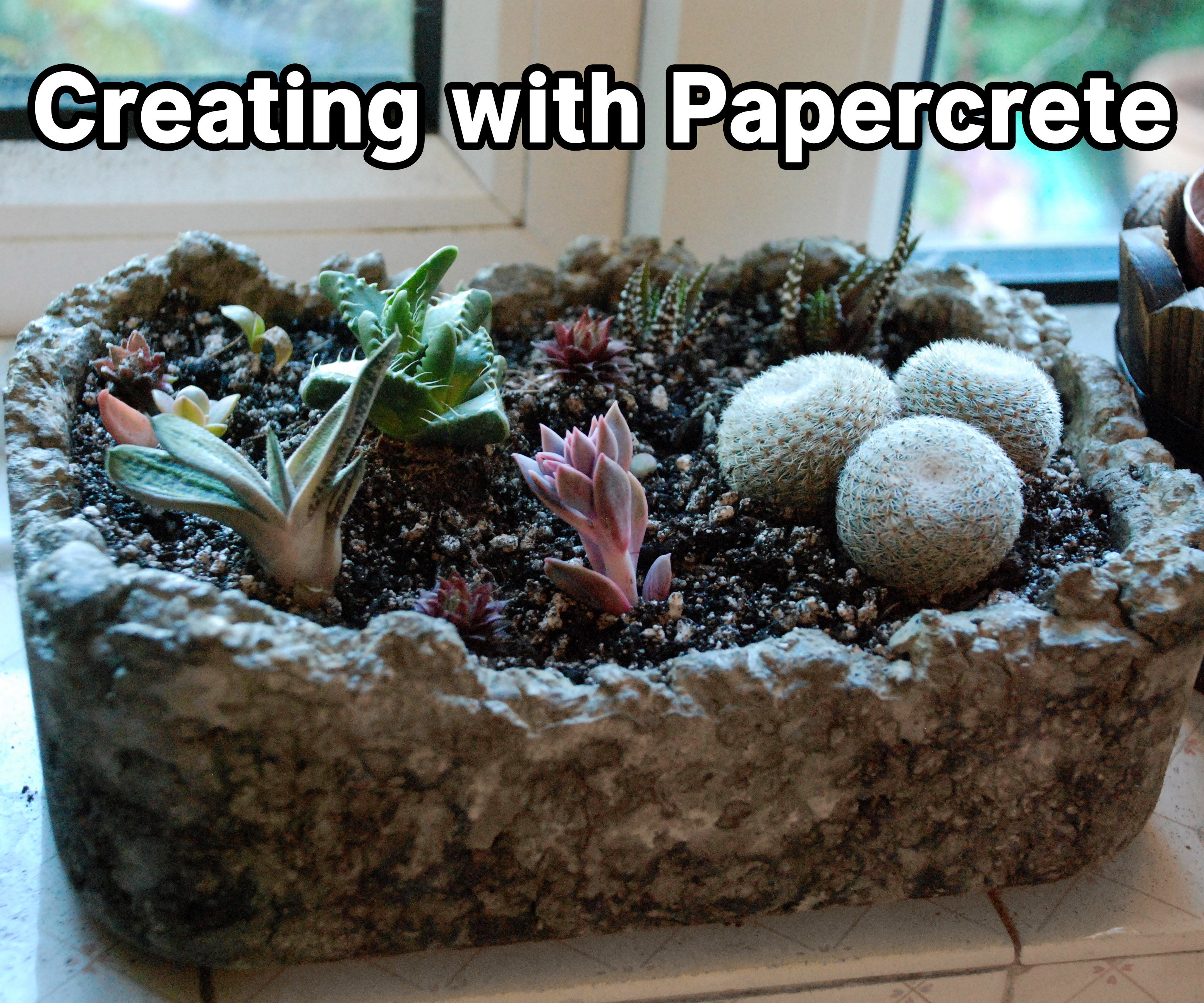 Creating With Papercrete