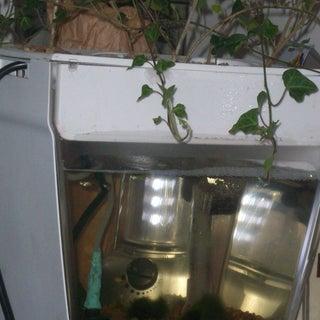 Window Aquaponics Garden