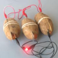 200px-PotatoBattery.png