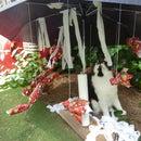 "Tropical Cat Christmas ""Tree"""