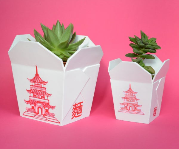 CHINESE TAKEOUT BOX -  3D PRINTED PLANTER